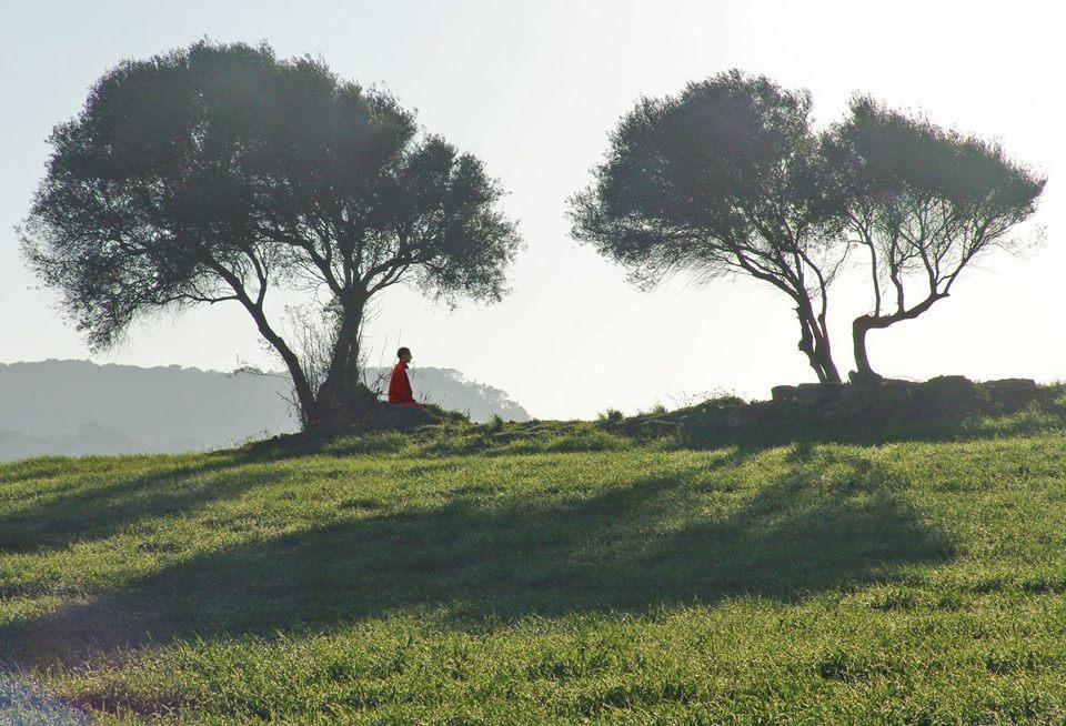Rest & Reflect: Beginner's Meditation Retreat